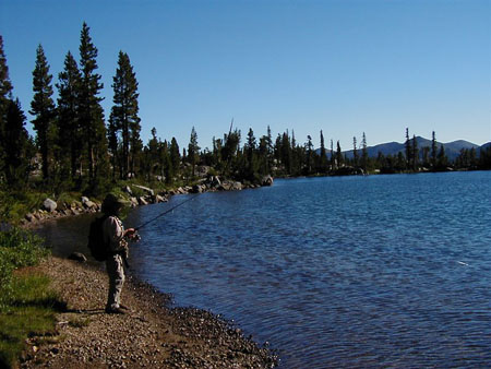 Leavitt Meadows Pack Station in Bridgeport, CA - Lakes and